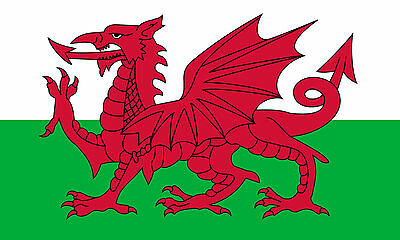 Wales National Flag 5x3ft