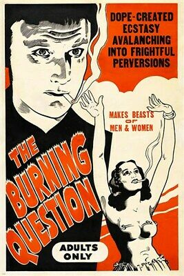 adult movie poster THE BURNING QUESTION dope perversions CULT FAVE 24X36 hot
