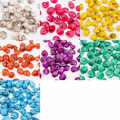 UPICK Mini Common Button Top Thai SEA SHELL Craft DIY Decorate Kit Wedding A1341