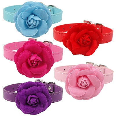 5pcs PU Leather Cat Dog Collars With Big Flower Studded for Boy Girl Dogs