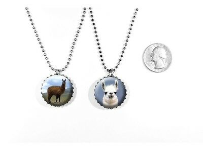 Llama South American Pack Animal Kuzco Tina 2 Sided Necklace