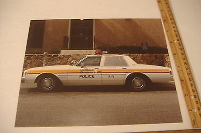~Glendale Police~K-9~Vintage 8 X 10 Color Photo~