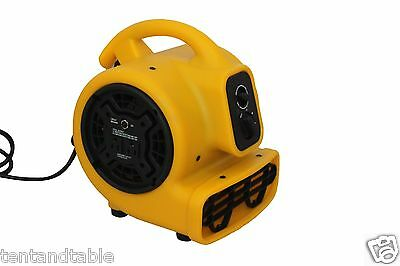 Zoom Centrifugal Carpet Floor Dryer 1/5 HP New Construction Product ZOOM BLOWERS