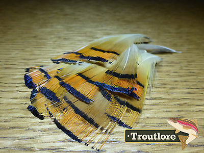 Fly Tying Feathers - Golden Pheasant Cape Tippet Feathers - Bag Of 20 - New