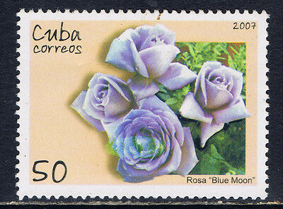 Caribbean Country #4756(4) 2007 50 cent ROSES - FRAGRANT CLOUD MNH