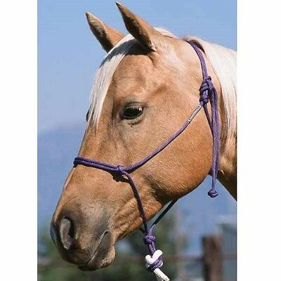 #124 Rope Halter Double Diamond Buck Brannaman Collection - Cob Size