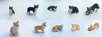 Cat Choice of Colour & Positions, Dolls House Miniature, Pets & Animals, 1.12th