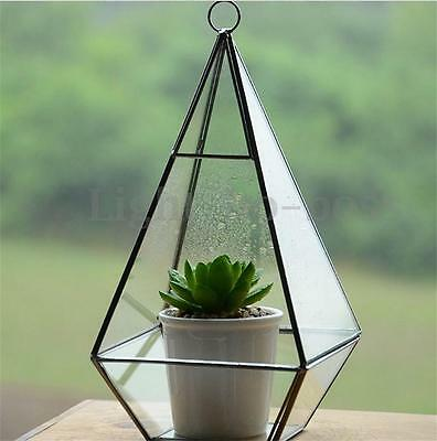 irregular glas box treibhaus plant fr hbeet terrarium gew chshaus balkon garten eur 21 99. Black Bedroom Furniture Sets. Home Design Ideas