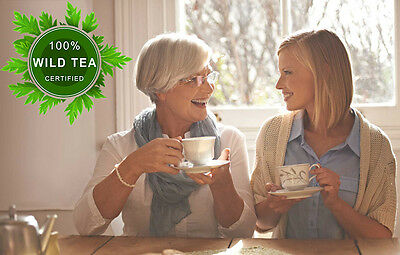 Fresh, Pure Wild Green Tea For Natural Weight Loss, 100% Natural, Certified Wild
