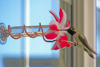 HAND CRAFTED Red & White Swirl Copper Window Mount Hummingbird Feeder