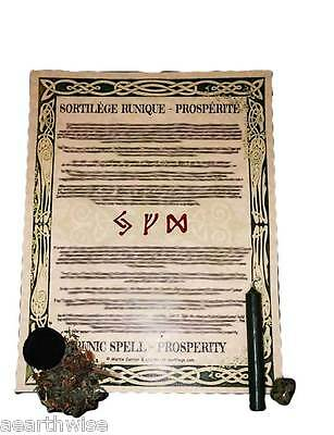 RUNIC SPELLCRAFT PROSPERITY & ABUNDANCE KIT Wicca Witch Pagan Goth RITUAL KIT