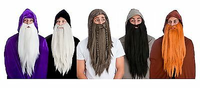 Adult Mens Deluxe Wig Long Beard Fancy Dress Medieval Larp Fancy Dress Accessory