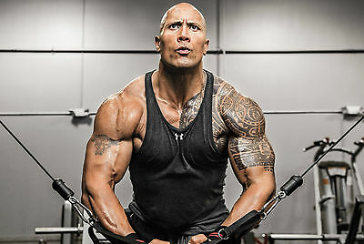 The Rock - Dwayne Johnson Poster 4 - A3 297X420Mm - Buy 2 Get A 3Rd Free! Wwe