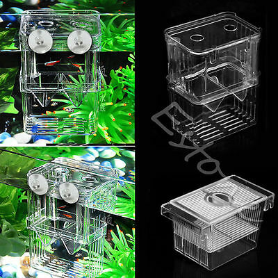 Fish Breeding Hatchery Young Fish Incubator Aquarium Breeder Isolation Box Tank