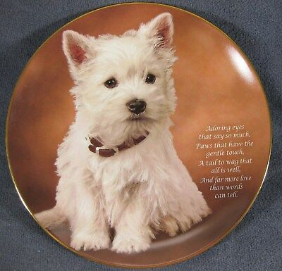Adoring Eyes Collector Plate From Beloved Westies by Danbury Mint LE