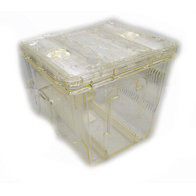 """Entegris GSW 300 Wafer Carrier FOSB 300mm 12"""" Unified Pod FOUP (No Handles)"""