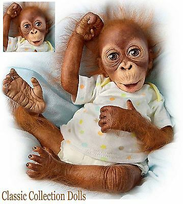 "Ashton Drake ""BABY BABU"" - ADORABLE 16"" BABY ORANGUTAN DOLL -NEW- IN STOCK NOW !"