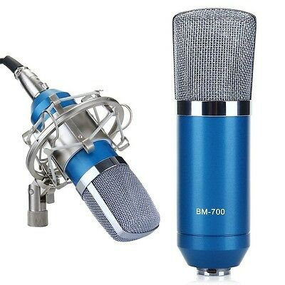 Professional Condenser Microphone Mic Sound Studio Recording Dynamic with Stand,