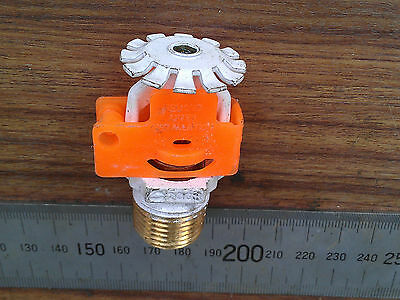 Tyco Brass Automatic Fire Sprinkler Head, white, SP Pendant Spray
