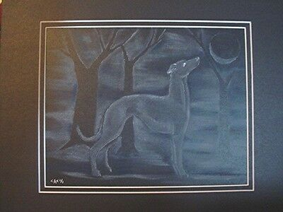 GREYHOUND Whippet original pastel on black by Cindy A. Conter SPIRIT IMAGE #13