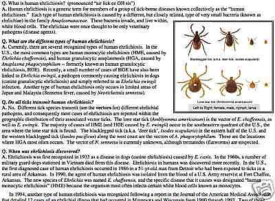 200+ INDUSTRIAL HYGIENE & ENTOMOLOGY FACT SHEETS on CD