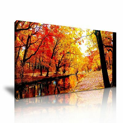 Stunning Red Forest Trees River Nature Canvas Wall Art Picture Print 60x30cm