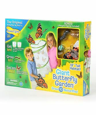 Insect Lore Giant Live Butterfly Hatching Garden Pavilion Life Cycle Habitat Kit