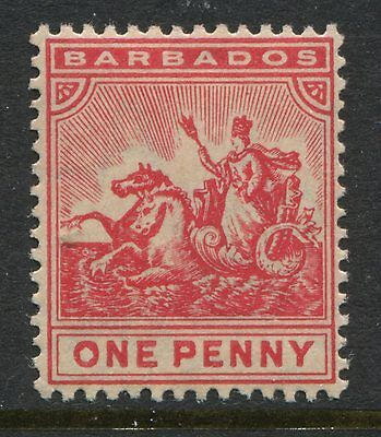 Barbados 1904 1d carmine rose unmounted mint NH