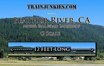 """TrainJunkies O Scale """"Feather River Mt""""  Backdrop L2R 24x144"""" C-10 Brand New"""