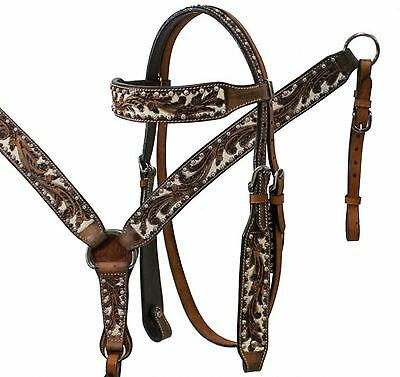Showman Headstall/Breast collar Reins Set with Acorn Tooling and Painted Studs!