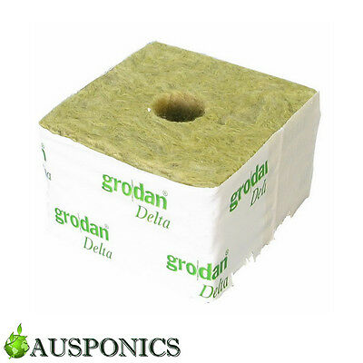 50 PACK OF 75 x 75MM GRODAN ROCKWOOL CUBE WITH HOLE For Hydroponic Seedling