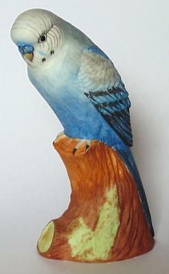 Crown Staffordshire Beautiful Hand Painted Budgerigar