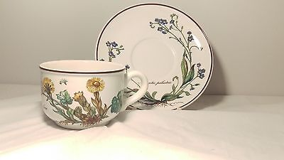 EXCELLENT! Villeroy & Boch Botanica Tussilage Farfara Cup and Saucer Set (s)