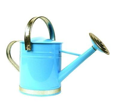 New Basic 0.5 Gal. Traditional Decorative Blue Metal Garden Lawn Watering Can