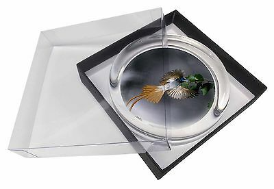 Humming Bird Glass Paperweight in Gift Box Christmas Present, AB-91PW