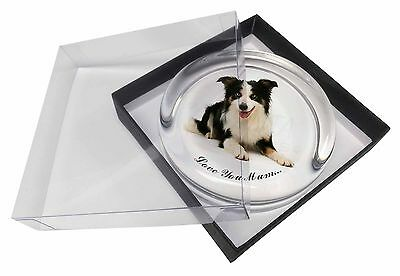 Tri-Colour Border Collie 'Love You Mum' Glass Paperweight in Gift , AD-BC35lymPW