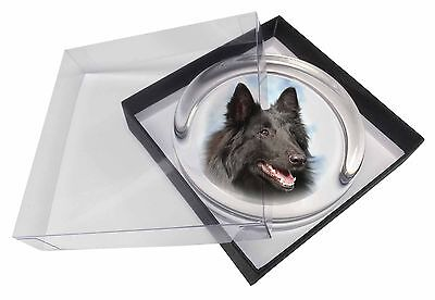 Black Belgian Shepherd Dog Glass Paperweight in Gift Box Christmas Pre, AD-BS3PW