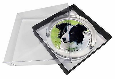 Border Collie Dog 'Love You Mum' Glass Paperweight in Gift Box Chr, AD-CO69lymPW