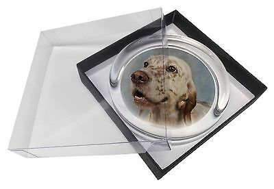 English Setter Dog Glass Paperweight in Gift Box Christmas Present, AD-ES3PW