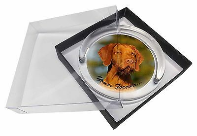 Wirehair Vizsa 'Yours Forever' Glass Paperweight in Gift Box Christm, AD-HWV1yPW