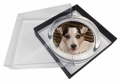 Jack Russell 'Love You Grandma' Glass Paperweight in Gift Box Chri, AD-JR56lygPW