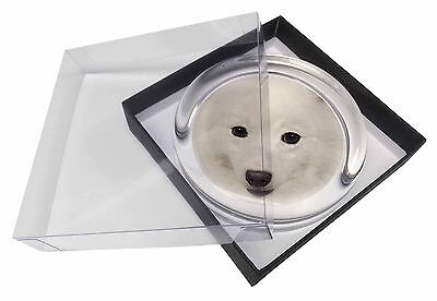Japanese Spitz Dog Glass Paperweight in Gift Box Christmas Present, AD-JS1PW
