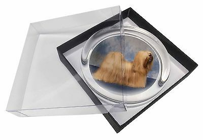 Lhasa Apso Dog Glass Paperweight in Gift Box Christmas Present, AD-LA1PW