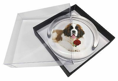 St. Bernard Dod with Red Rose Glass Paperweight in Gift Box Christma, AD-SBE5RPW