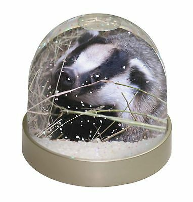 Badger in Straw Photo Snow Dome Waterball Stocking Filler Gift, ABA-1GL