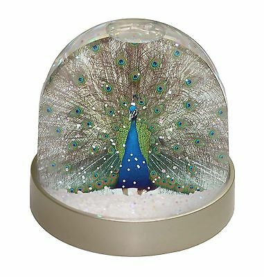 Rainbow Feathers Peacock Photo Snow Dome Waterball Stocking Filler Gi, AB-PE13GL