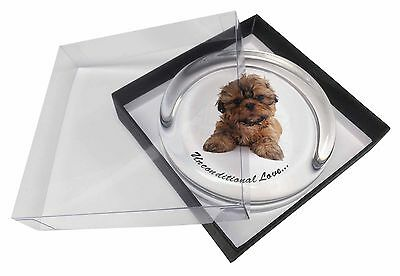 Shih-Tzu Dog-Love Glass Paperweight in Gift Box Christmas Present, AD-SZ4uPW