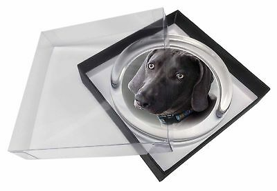 Weimaraner Dog  Glass Paperweight in Gift Box Christmas Present, AD-W78PW