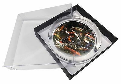 Swimming Koi Fish Glass Paperweight in Gift Box Christmas Present, AF-K1PW