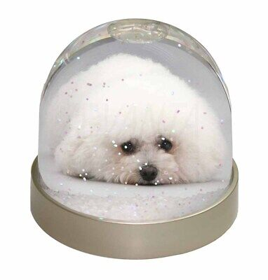 Bichon Frise Dog Photo Snow Dome Waterball Stocking Filler Gift, AD-BF1GL